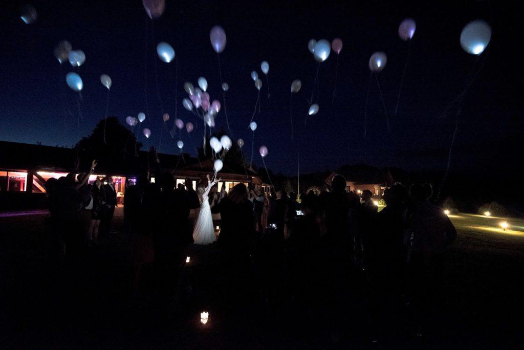 helio balionai sodyba pas sestoka moletai